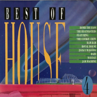 V/A - Best Of House Volume 4 (LP) (EX-/VG)